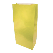"10 PCS YELLOW PAPER SACKS 4.5""W X 9.5""L X 2.5"" (24PACKS) PF-6906"