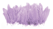 "0.43 OZ 5""-7"" GOOSE CRAFT FEATHERS - LAVENDER (24 PACKS) PF-2897"