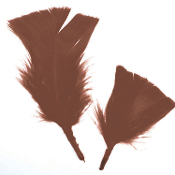 0.49 OZ BROWN FEATHERS (24 PACKS) PF-2894