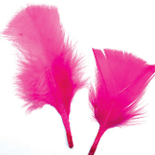 0.49 OZ MAGENTA FEATHERS (24 PACKS) PF-2471