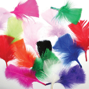 0.49 OZ MULTI COLOR FEATHERS (24 PACKS) PF-2474