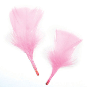 0.49 OZ PINK FEATHERS (24 PACKS) PF-2468