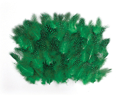 0.22 OZ FASHION FEATHER - GREEN (24 PACKS) PF-3064