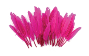 "0.22 OZ 5""-7"" GOOSE FEATHER - MAGENTA (24 PACKS) PF-3080"