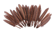 "0.22 OZ 5""-7"" GOOSE FEATHER - BROWN (24 PACKS) PF-3083"