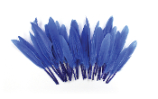 "0.22 OZ 5""-7"" GOOSE FEATHER - BLUE (24 PACKS) PF-3084"