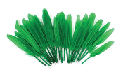 "0.22 OZ 5""-7"" GOOSE FEATHER - GREEN (24 PACKS) PF-3085"
