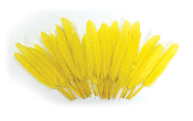 "0.22 OZ 5""-7"" GOOSE FEATHER - YELLOW (24 PACKS) PF-3086"