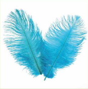 "2 PC 6""-8"" OSTRICH FEATHERS - LIGHT BLUE (24 PACKS) PF-3751"