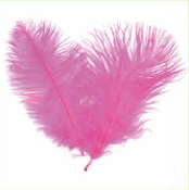 "2 PC 6""-8"" OSTRICH FEATHERS - HOT PINK (24 PACKS) PF-3752"