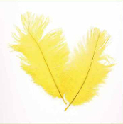 "2 PC 6""-8"" OSTRICH FEATHERS - YELLOW (24 PACKS) PF-3753"