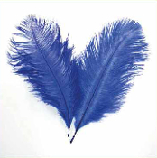 "2 PC 6""-8"" OSTRICH FEATHERS - BLUE (24 PACKS) PF-3755"