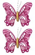 "2 PC 5"" BUTTERFLY CLIPS-MAGENTA (24 PACKS) PF-4501"